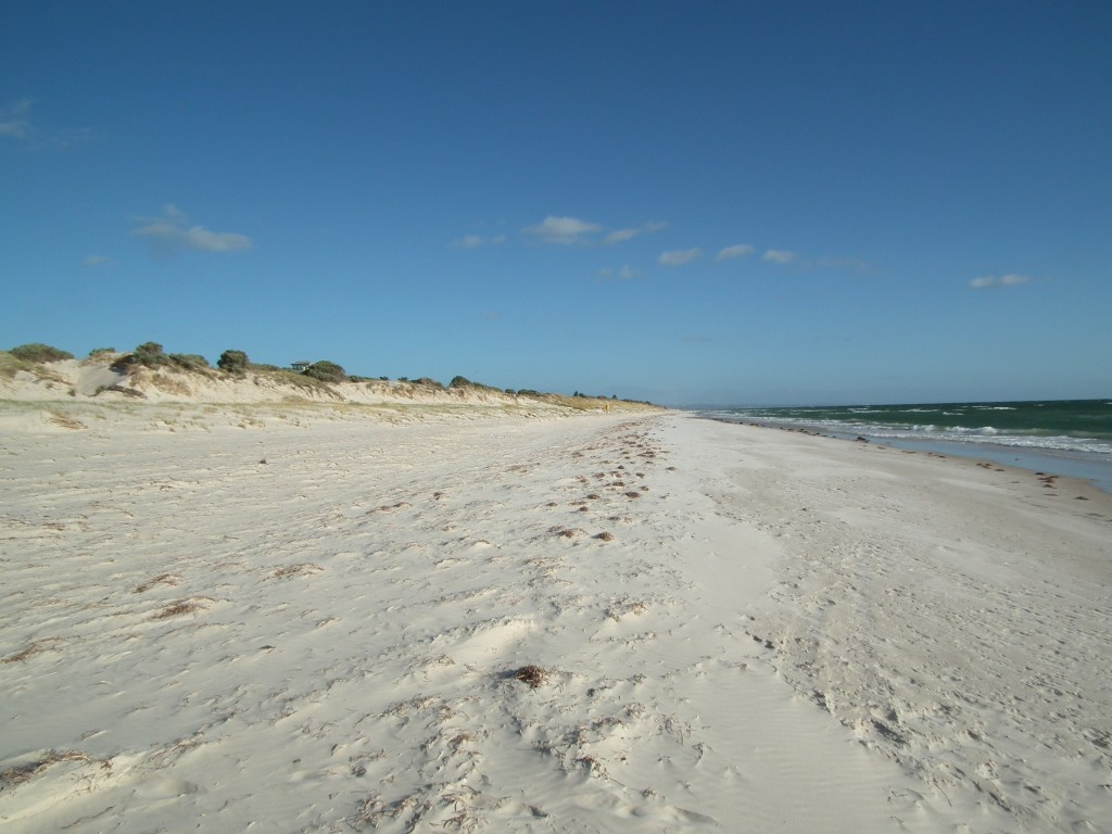 The pristine beach and dunes at Tennyson Dunes, Adelaide, South Australia, with not a person in sight!