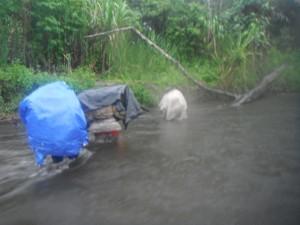 Rain on the Kokoda Trail