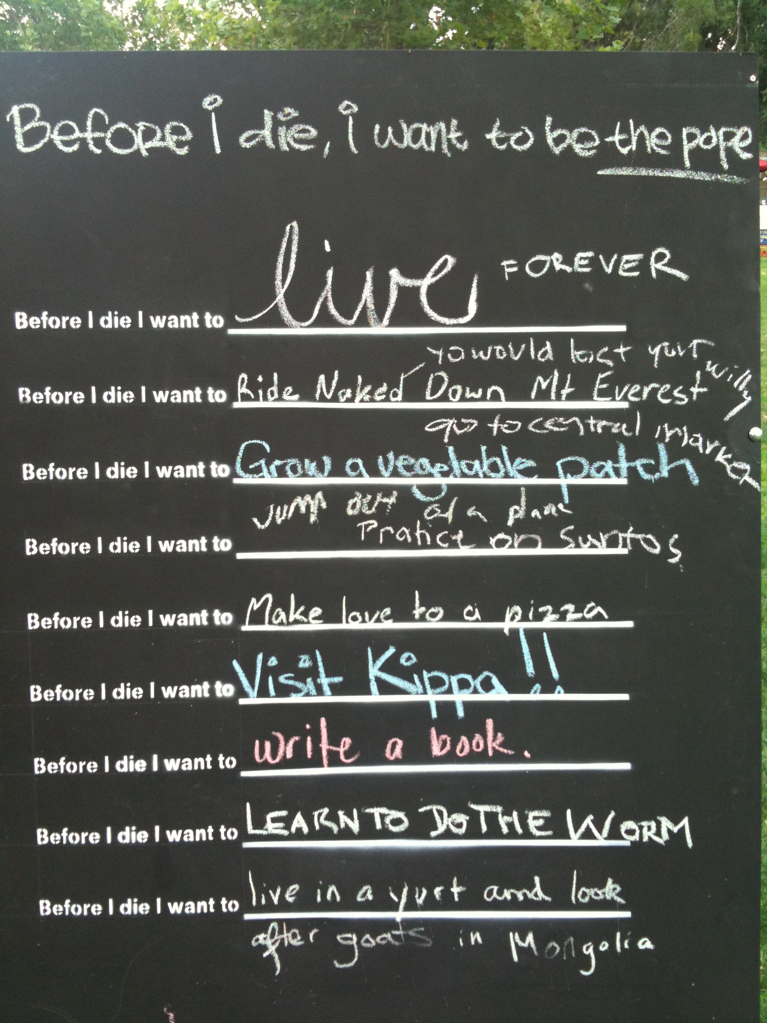 things i want to do before i die essay Here's a sample essay about life written by which may move against you is one of the basic things needed to get planned before being.