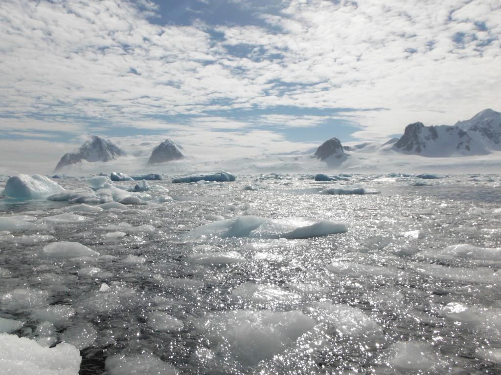Antarctica Kosher