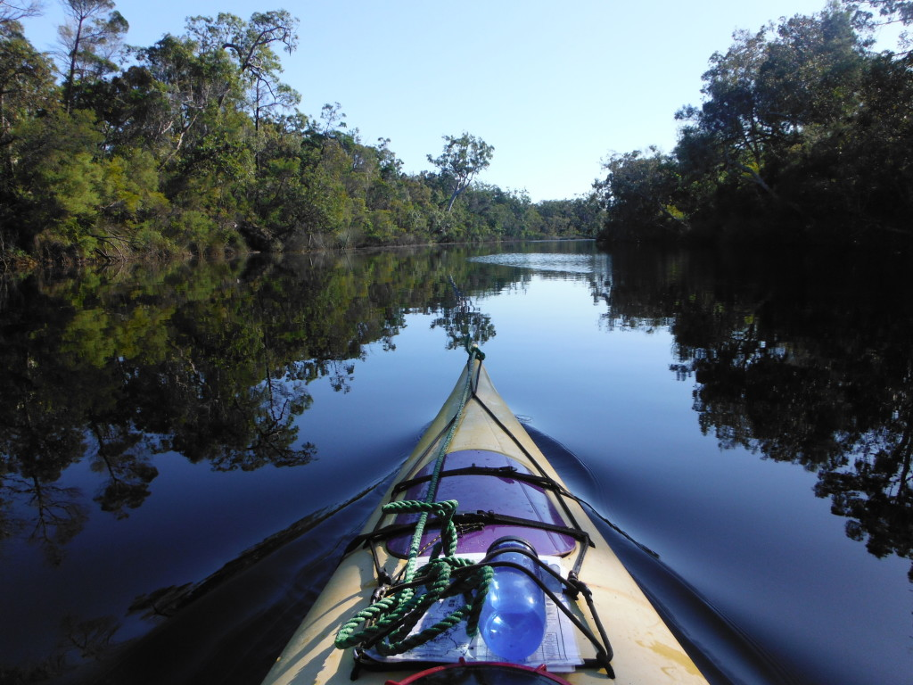 Kayak Noosa Everglades Queensland